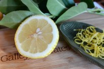 lemon rind on By the Bay Creations