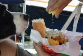 squeeze lemon with Eddie nose