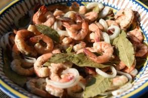 kristins shrimp 1