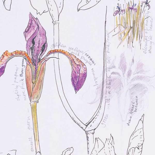 "Sketchbook Draw Illustration Image from ""Interpretations: Look, Record, Draw"" featuring Jan Beaney & Jean Littlejohn"