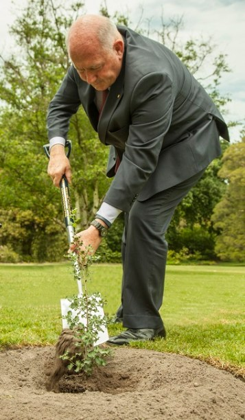Governor-General Sir Peter Cosgrove plants a Gallipoli Oak at the RBGM