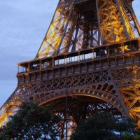 Paris Flashback: From the Sahara to the Seine