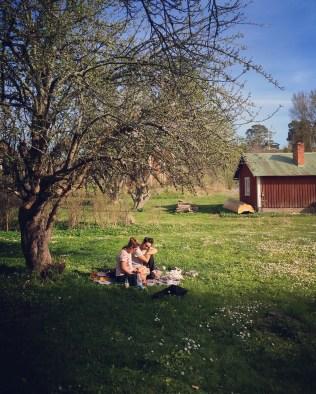 En dagsutflykt kan vara att bara sitta under ett träd tillsammans