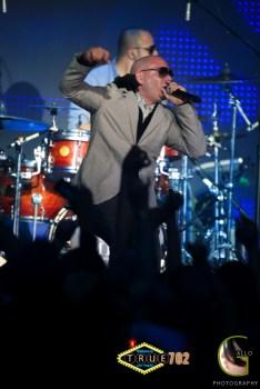 AGP-Pitbull---005
