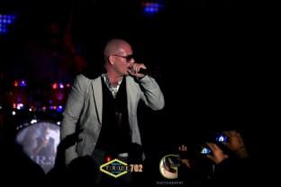 AGP-Pitbull---014