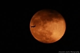 Moon-and-Airplane-01