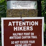 Whiteoak Canyon Trail
