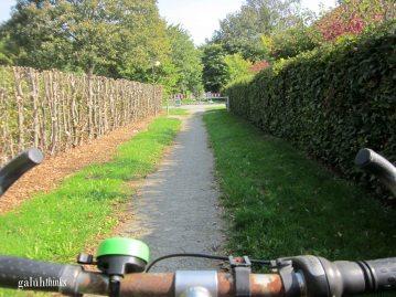 Very nice bike path!
