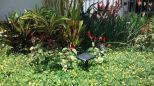 Villa Encantado Garden