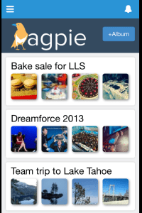 Magpie for Salesforce