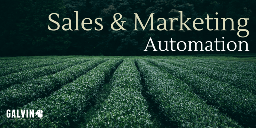 Sales & Marketing Automation