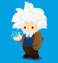 Salesforce Einstein Wave Analytics Integration