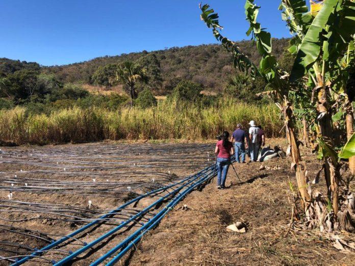 Secretaria analisa benefícios da água magnetizada na agricultura