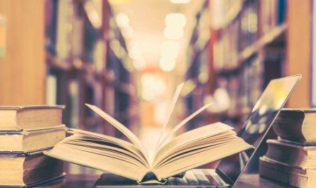 Editora Saphi lança livro guia para um Sucesso Sustentável a partir da manutenção da boa saúde