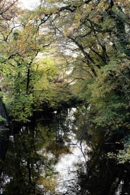 Wassergraben im Schlosspark
