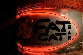 Fat Cat Bar
