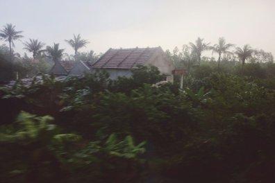 Häuser in mitten tropischer Pflanzen (aus dem fahrenden Zug durch die Scheibe hindurch)