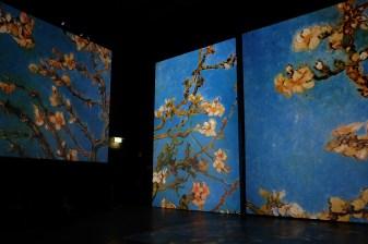 Van Gogh Alive Ausstellung