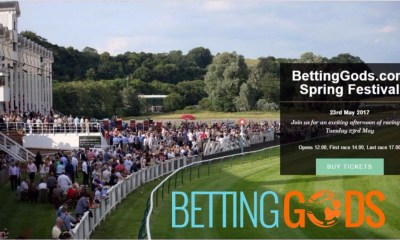 BettingGods Spring Festival