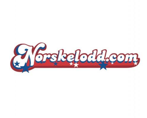 Norskelodd-logo-white-BG-495x400
