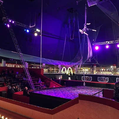 The circus show seating area is to the left