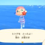 あつまれどうぶつの森 遊泳解禁!! 無料アップデート7月3日(金)