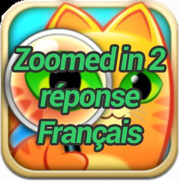 Zoomed in 2 réponse Français
