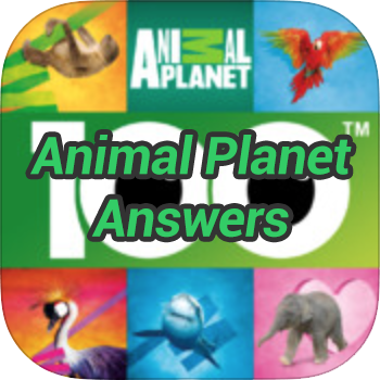 Animal Planet Answers