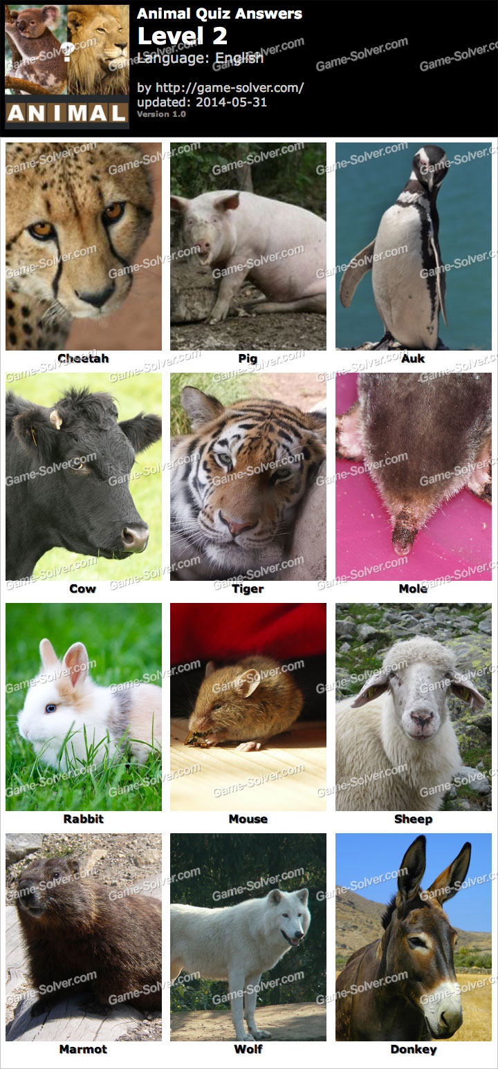 Animal Quiz Level 2
