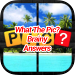What's the Pic Brainy Answers