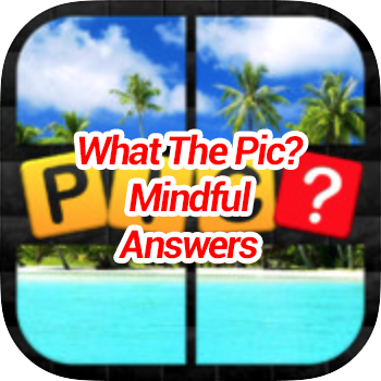 Whats The Pic Mindful Answers
