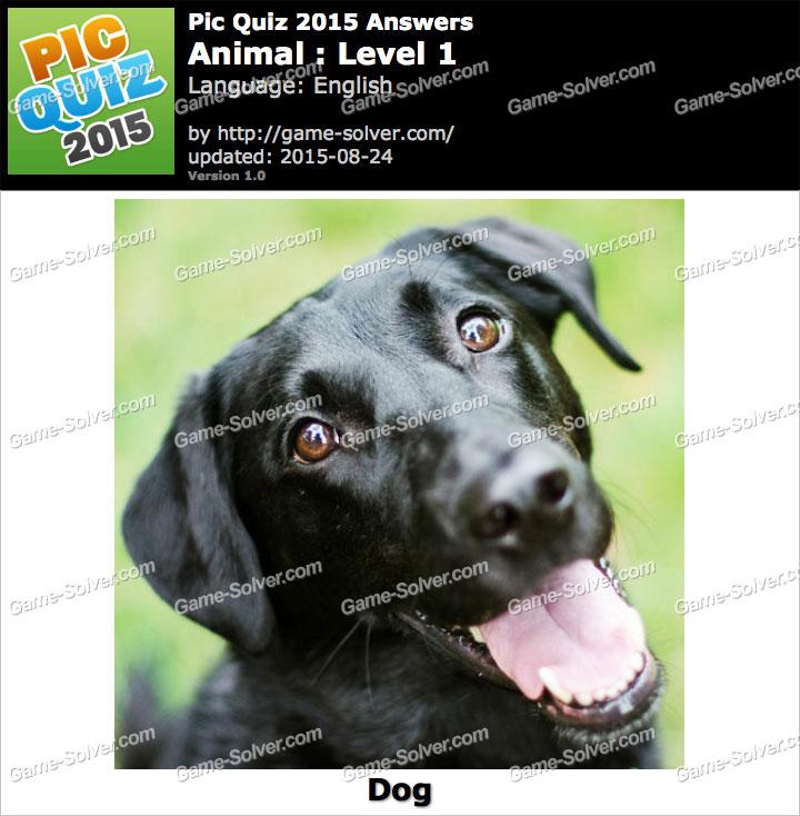 Pic Quiz 2015 Animal Level 1