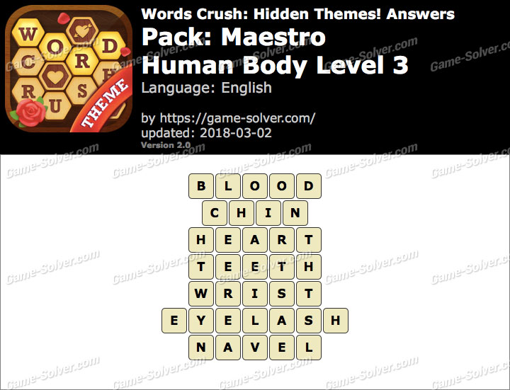 Words Crush Maestro-Human Body Level 3 Answers
