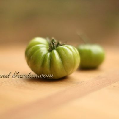 "Healthier Crunchier ""Baked"" Fried Green Tomato Recipe"