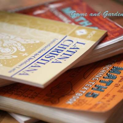 Why I Homeschool and the Effects of Homeschooling on Family Life