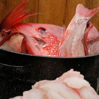 Easy Homemade Fish Stock Recipe