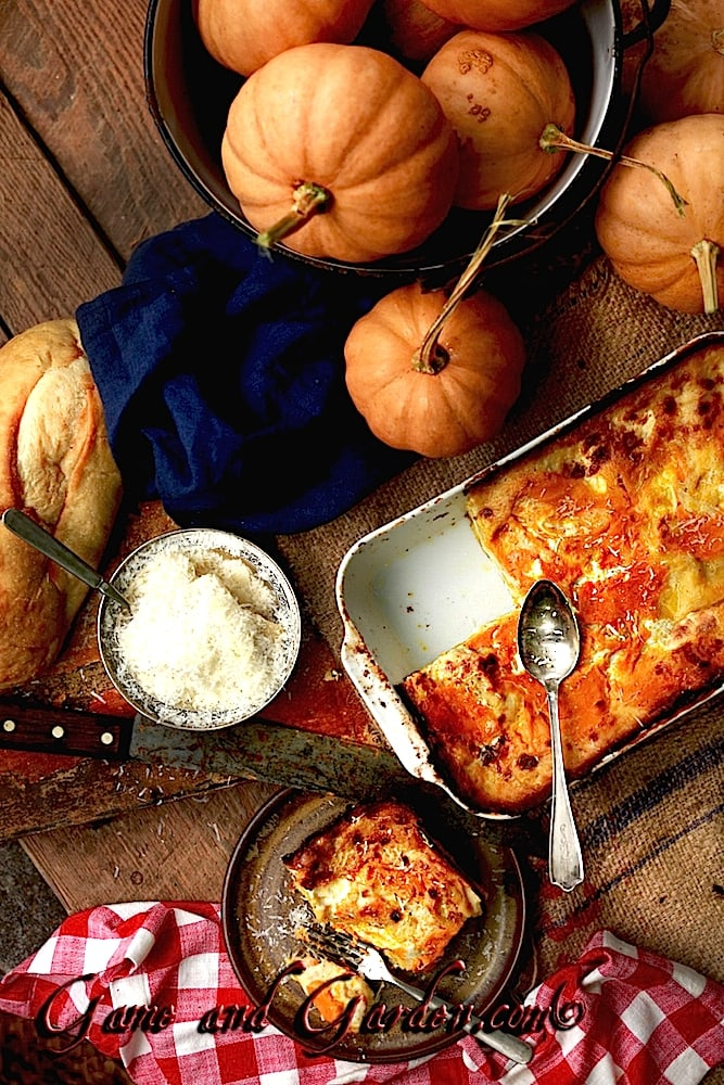 Creamy Comfort food perfect for entertaining! Pumpkin Lasagna with White Sauce!
