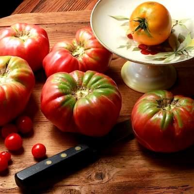 Dreamy Tomato Pie Recipe