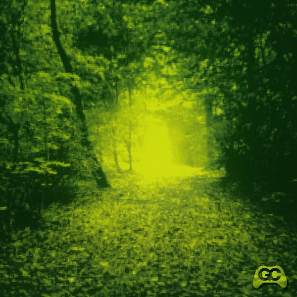 Leaves Fill the Path – Duzzled