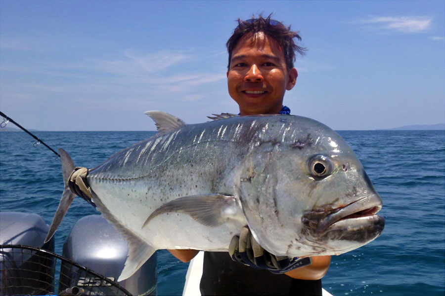 giant-trevally_popping_andaman_carpenter-f3711-rod_shimano-stella-18000-reel_amegari-popper_chen