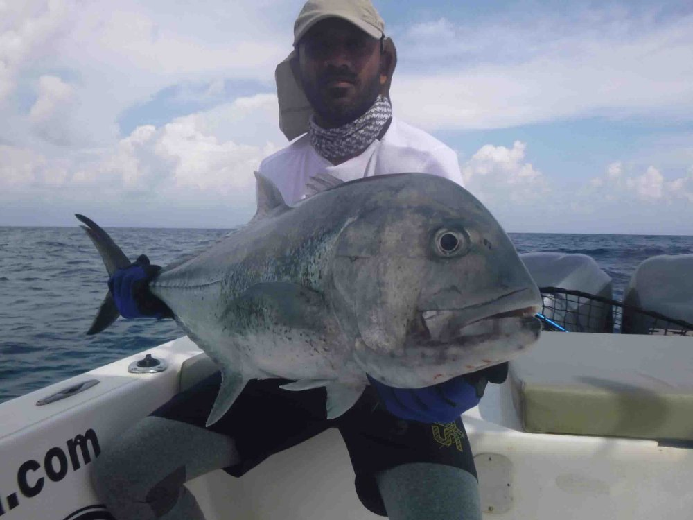 giant-trevally_popping_andaman_race-point-150-rods_shimano-stella-reels_kokari-popper_arjun
