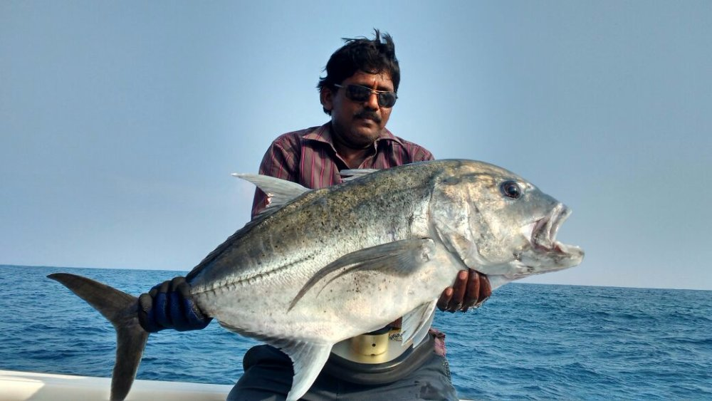 rasna_gt_17kg_popping_racepoint_150_rod_shimano_stella_cubera_el_toro_popper_andamans