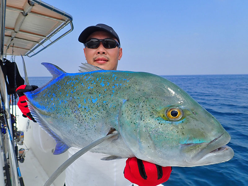 14_bluefin-trevally_popping_andamans_fishing_shimano-stella-reels_fcl-rods_blaze-garage-lures-alwyn-tan