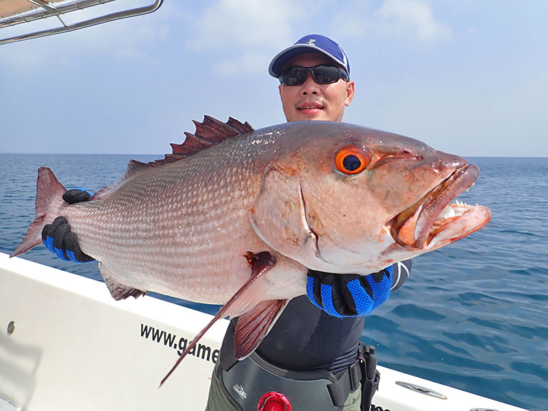 15_bohar-snapper_popping_andamans_fishing_shimano-stella-reels_fcl-rods_blaze-garage-lures-alwyn-tan