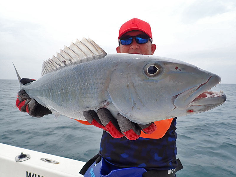 17_giant-trevally_popping_andamans_fishing_shimano-stella-reels_carpenter-rods_blaze-garage-lures-alwyn-tan
