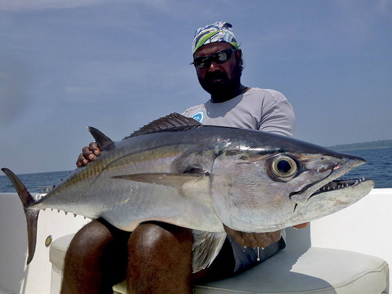 3_dogtooth-tuna_popping_andamans_fishing_shimano-stella-reels_carpenter-rods_blaze-garage-lures-alwyn-tan