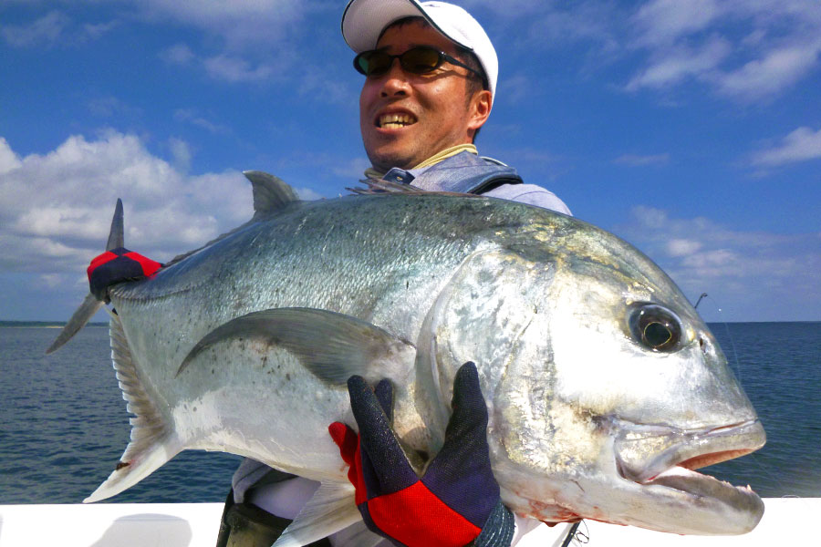 giant-trevally_popping_andaman_ripple-fisher-ultimo-83-m-rod_shimano-stella-14000-xg-reel_awaumi-i-popper_kokubo