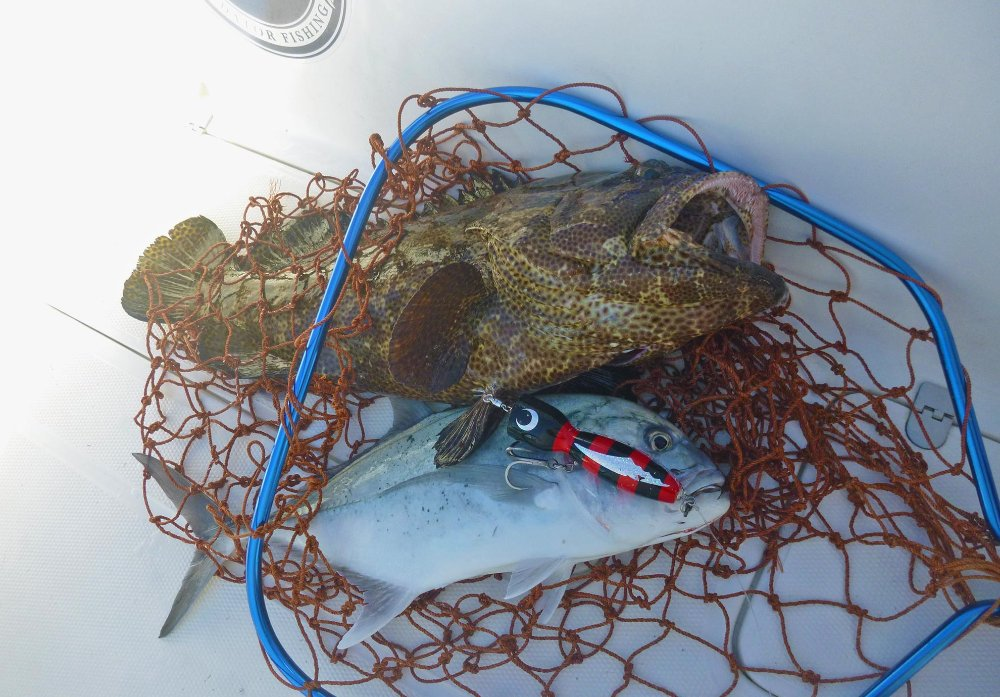 no-2_giant-trevally_grouper_fishing_popping_andaman_shimano-stella_gamefishingasia_boat_big-fish_gtpopping_boat-charter