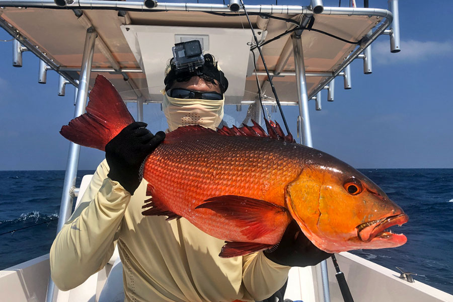 red-snapper_jigging_andaman_carpenter-85-36-rod_daiwa-saltiga-gt-6000-reel_suresh