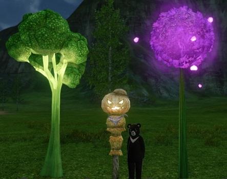▲「ダルコリの木」(左)と「ダルニウムの花」(右)